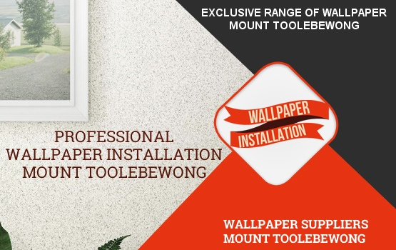 Wallpaper Installation Mount Toolebewong